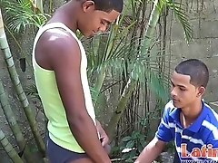 Exotic twink mates function strip domino for a blowjob